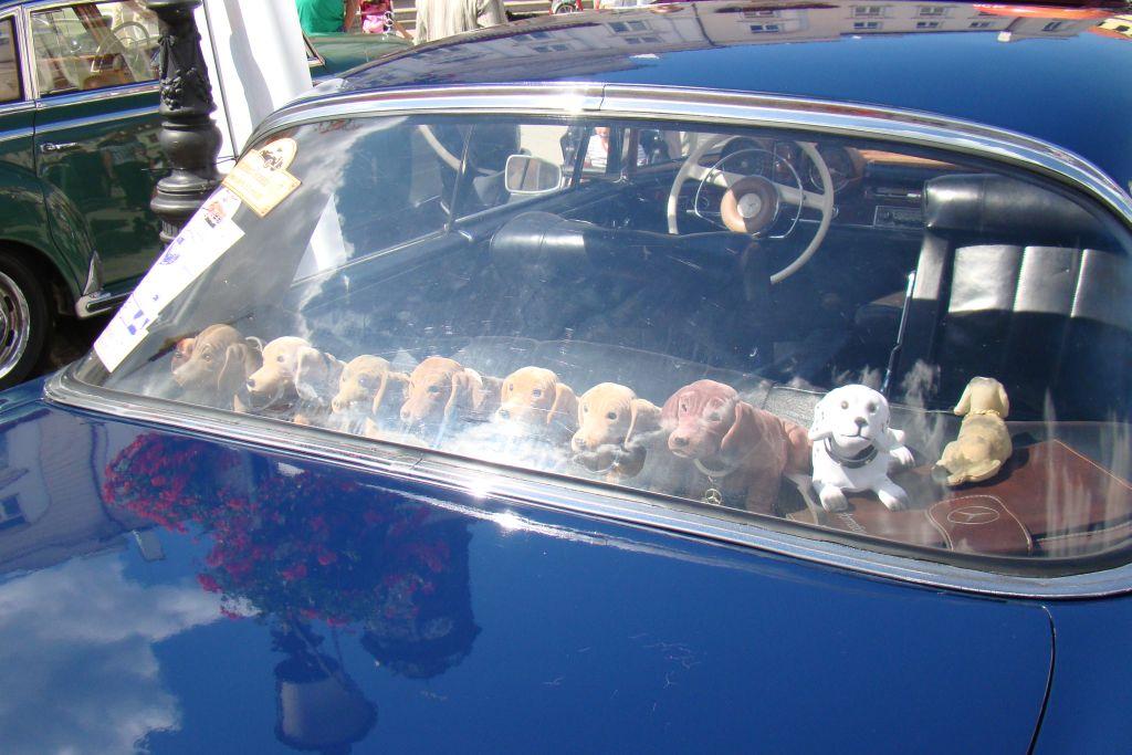 autoszybypakula-mercedesempowisle-2012-1